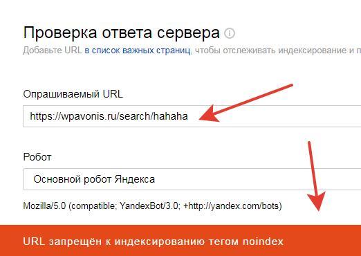WordPress 5.6 - результаты поиска на сайте стали попадать в индекс